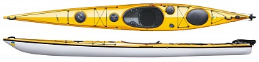 Expedition Yellow 2d